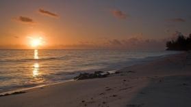 Пресушаване на океана: Мистерии от дълбините